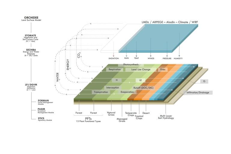 ORCHIDEE_model_diagram